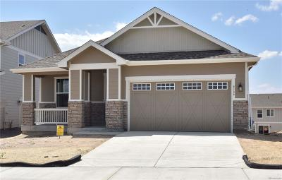 Castle Rock Single Family Home Active: 4166 Forever Circle