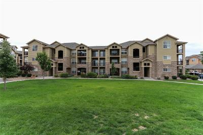 Parker Condo/Townhouse Under Contract: 17442 Nature Walk Trail #308