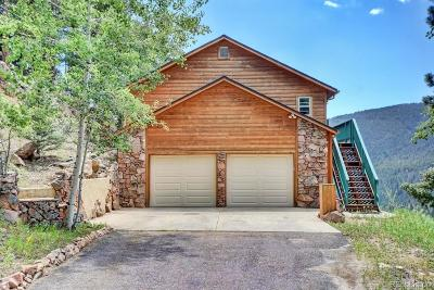 Conifer Single Family Home Active: 23976 Bent Feather Road