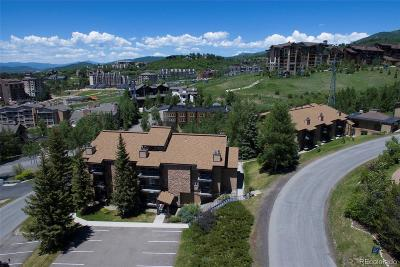 Steamboat Springs Condo/Townhouse Active: 2350 Ski Trail Court #112