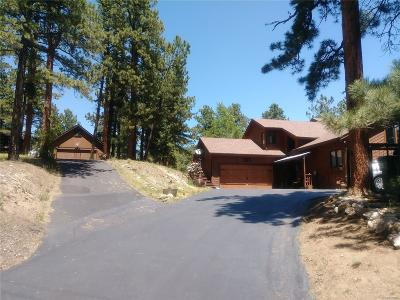 Conifer, Evergreen Single Family Home Active: 191 Hillside Road