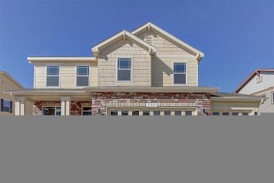 Castle Rock Single Family Home Under Contract: 1368 Sidewinder Circle