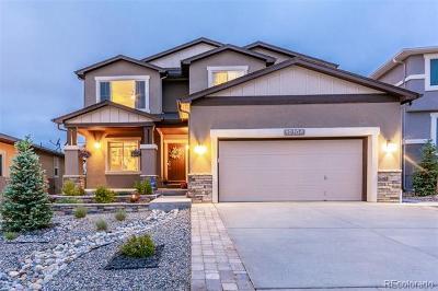 Colorado Springs Single Family Home Active: 10104 Edgemont Ranch Lane