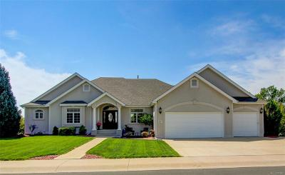 Fort Collins Single Family Home Active: 5301 Highcastle Court