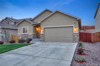 Colorado Springs Single Family Home Active: 7494 Dutch Loop
