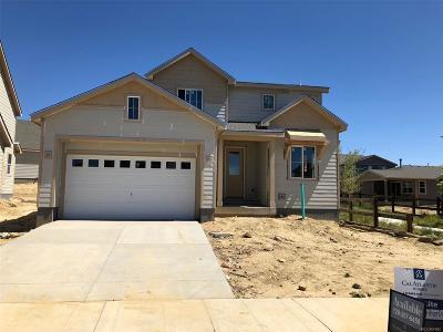 Firestone Single Family Home Active: 4701 Colorado River Drive