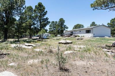 Elbert CO Single Family Home Active: $399,900