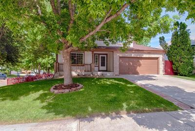 Longmont Single Family Home Active: 601 Silver Star Court