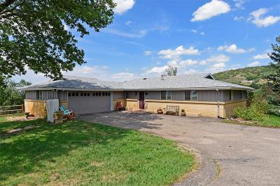Castle Rock Single Family Home Active: 747 North Faver Drive
