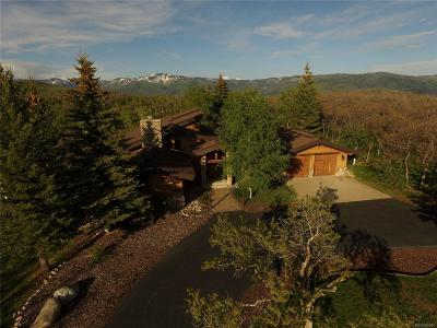 Steamboat Springs Single Family Home Active: 28800 Skyline Drive