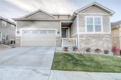 Douglas County Single Family Home Active: 11545 Colony Loop
