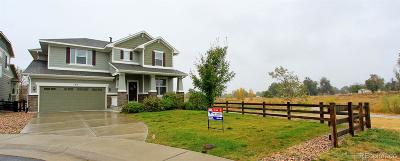 Erie Single Family Home Active: 174 Maxwell Circle
