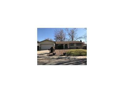 Arvada Single Family Home Active: 8603 Ingalls Circle