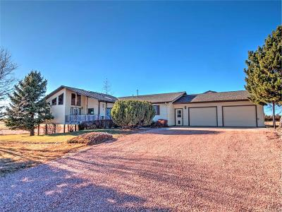 Elbert County Single Family Home Active: 13597 County Road 141