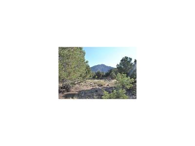 Crestone CO Residential Lots & Land Active: $159,000