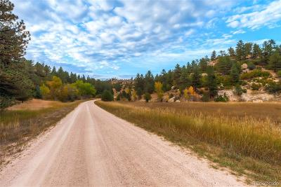 Castle Rock Residential Lots & Land Active: 6585 Lost Canyon Ranch Road
