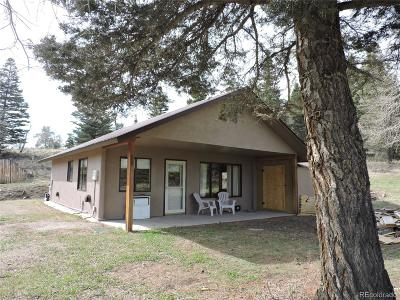 Single Family Home Active: 141 McNaughton Drive