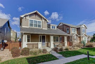 Denver Single Family Home Active: 388 Dallas Street