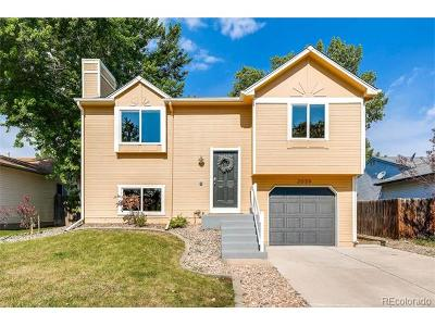 Longmont Single Family Home Active: 2039 Sumac Street