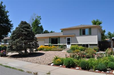 Aurora CO Single Family Home Active: $339,900