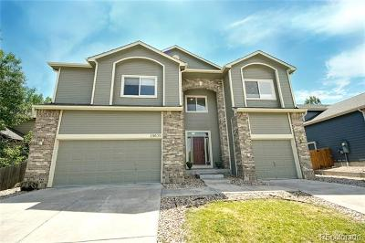 Parker Single Family Home Active: 16678 Tin Cup Court