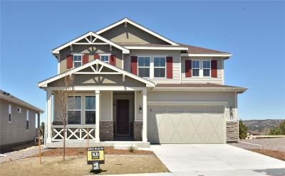 Castle Rock Single Family Home Active: 4244 Broken Hill Circle