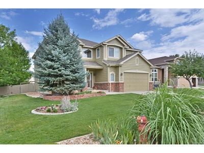Lafayette Single Family Home Active: 2984 Hawk Court