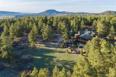 Larkspur CO Single Family Home Active: $1,045,000