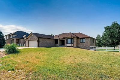 Arvada Single Family Home Active: 15682 West 79th Place