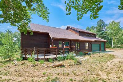Nederland Single Family Home Under Contract: 380 Cougar Run