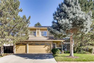 Denver Single Family Home Active: 4440 Argonne Street