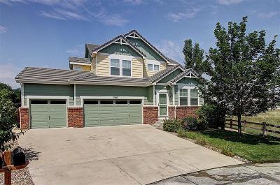 Parker Single Family Home Active: 17183 Knollside Avenue