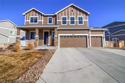 Castle Rock Single Family Home Active: 7644 Grady Circle