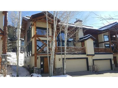 Steamboat Springs Condo/Townhouse Active: 2780 Cross Timbers Trail #1