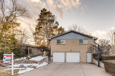 Denver Single Family Home Under Contract: 485 South Jersey Street