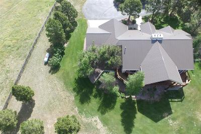 Kiowa Single Family Home Active: 15525 Highway 86