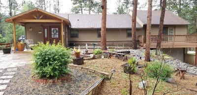 Sedalia Single Family Home Active: 606 South County Highway 67