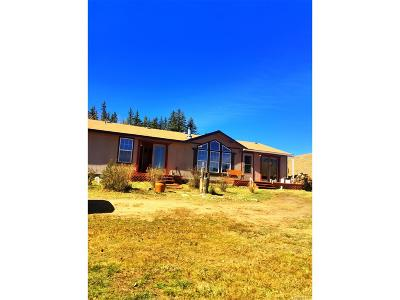 Park County Single Family Home Active: 577 Spearpoint Road