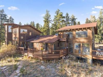 Bailey Single Family Home Active: 95 Elk Horn Court