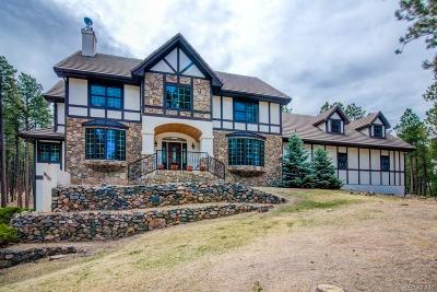 Colorado Springs Single Family Home Active: 19720 Twisted Pine Drive