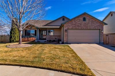 Littleton Single Family Home Under Contract: 11122 West Prentice Drive