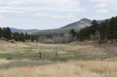 Evergreen Residential Lots & Land Active: 30099 Sue Road