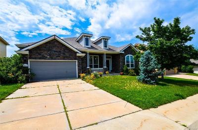 Castle Rock Single Family Home Active: 1026 Purple Sage Loop