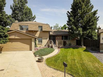 Centennial Single Family Home Under Contract: 7286 South Elm Court