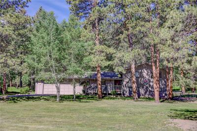Evergreen Single Family Home Under Contract: 28179 Seabiscuit Trail