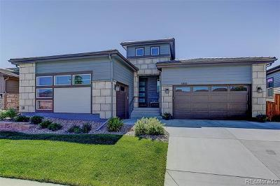Parker Single Family Home Active: 14650 Mission Walk Loop