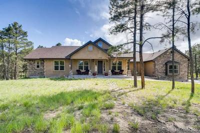 El Paso County Single Family Home Active: 15664 Pole Pine Point