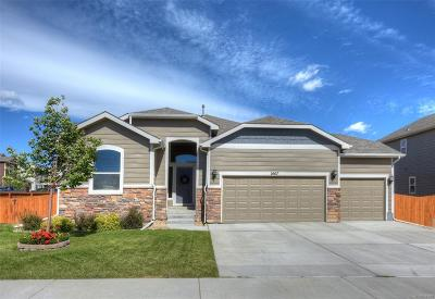 Mead Single Family Home Under Contract: 2607 Mustang Drive