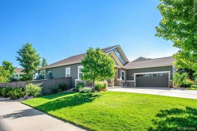 Castle Rock Single Family Home Active: 6887 Winthrop Circle