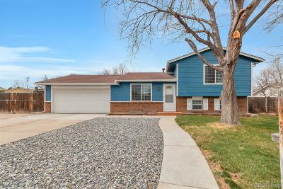 Brighton Single Family Home Under Contract: 397 South 29th Avenue